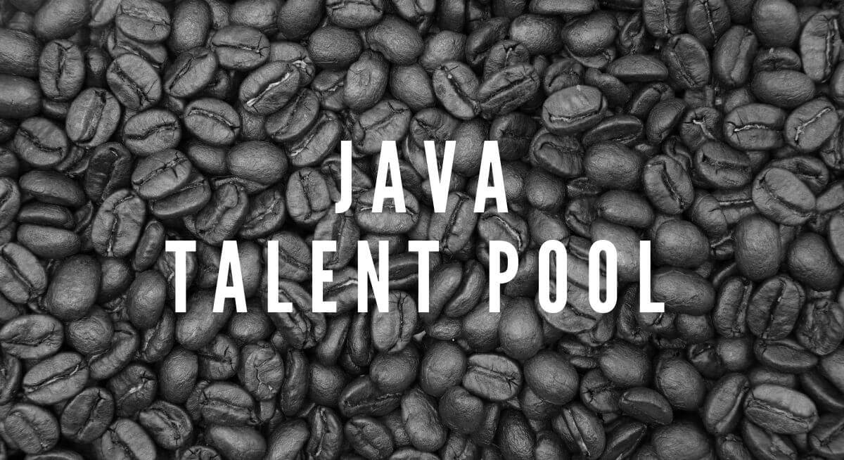 Java Developer Talent Pool